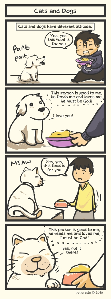 Cats and dogs as God comic strip
